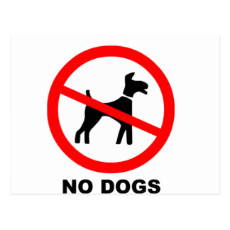 No Dogs Symbol Postcard