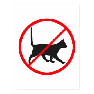 No Entry For Cats! Postcard