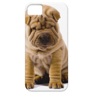 No frowns today! iPhone 5 cover