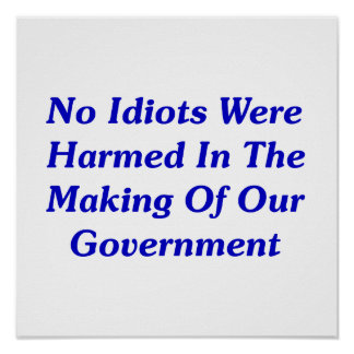 No Idiots Were Harmed In Making Our Government Poster