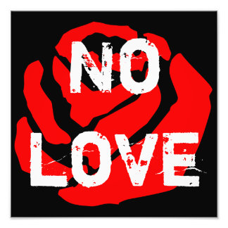 No Love Rose Photo Enlargement Poster