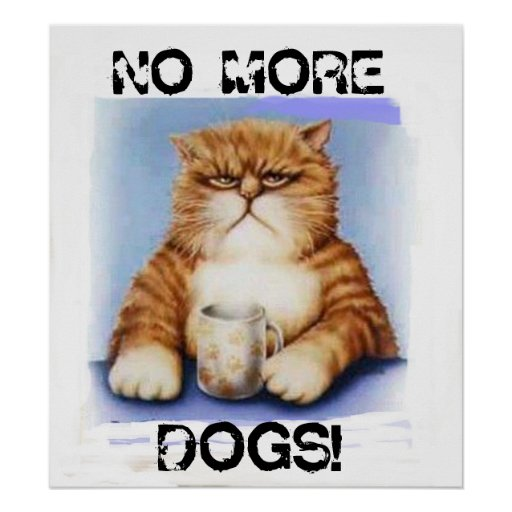NO MORE DOGS! POSTER