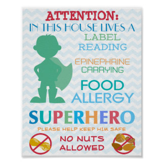 No Nuts Allowed Superhero Boy Sign for Home Poster