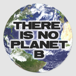 No Planet B Round Sticker