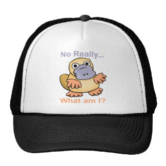 No Really... What am I? Platypus Mesh Hats