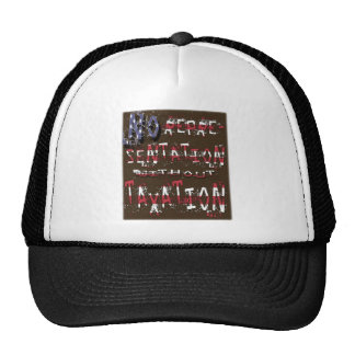 No Representation Without Taxation Mesh Hats