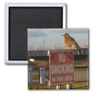No Smoking Robin Square Magnet