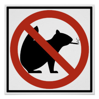 No Smoking Squirrels Allowed Highway Sign Poster