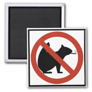 No Smoking Squirrels Allowed Highway Sign Square Magnet