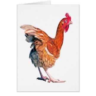 No Spring Chicken Birthday card