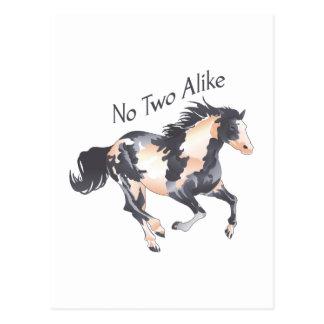 NO TWO ALIKE POSTCARD