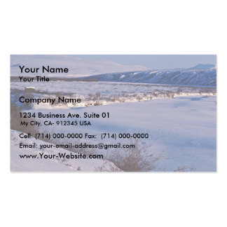 Noatak River Winter Scene Business Card Templates