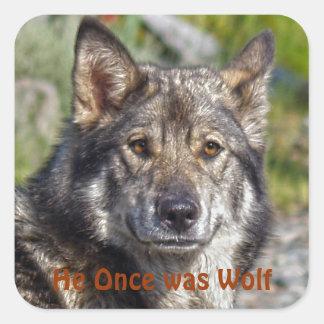 Noble German Shepherd Wolf-like Pose Square Sticker
