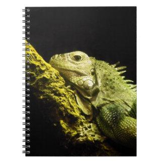 Noble Iguana Notebook