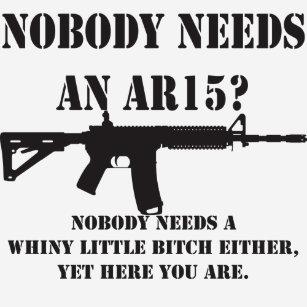 026bbf558a0 Nobody Needs An AR15  Funny Gun Rights T Shirt