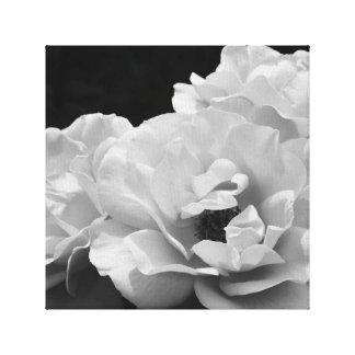 Noir Rose I Stretch Canvas