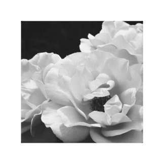 Noir Rose I Stretch Canvas Canvas Print