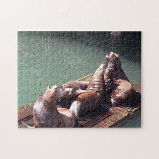 Noisy Sea Lions Puzzle