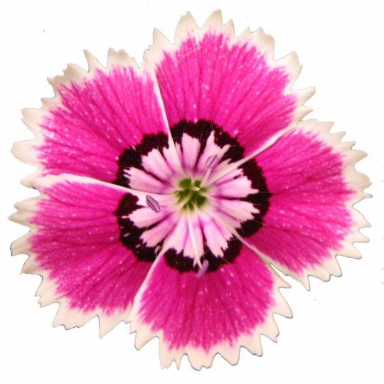 Non-lilting lapel flower photo sculpture badge
