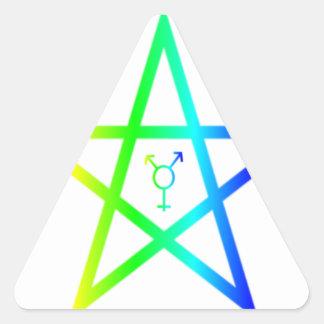 Nonbinary transgender rainbow pentagram #2 stickers