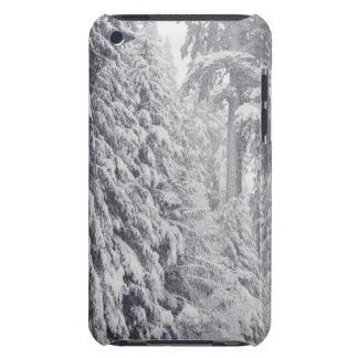 Nooksack River, Washington iPod Case-Mate Cases