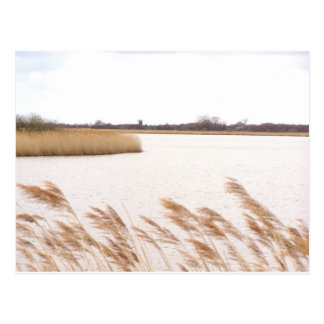 Norfolk Broads Postcard