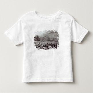 Norfolk Island Toddler T-Shirt