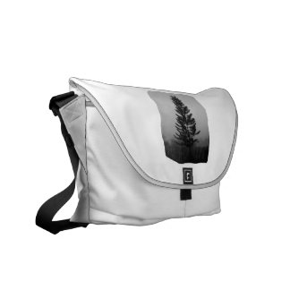 Norfolk Pine Black and White Picture Foggy Messenger Bag