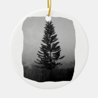 Norfolk Pine Black and White Picture Foggy Round Ceramic Decoration