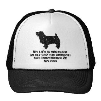 Norfolk Terrier Hats