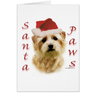 Norfolk Terrier Santa Paws Card