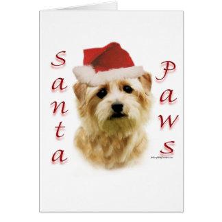 Norfolk Terrier Santa Paws Greeting Card