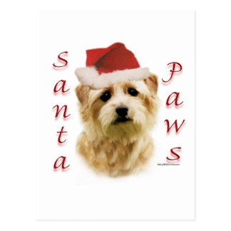 Norfolk Terrier Santa Paws Post Card