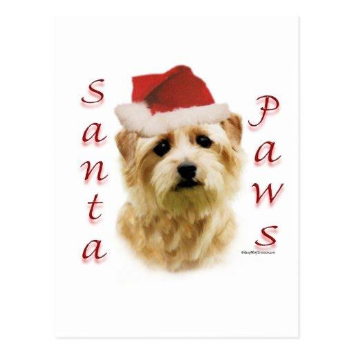 Norfolk Terrier Santa Paws Post Card