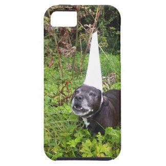 Norfolk Unicorn Hoax Unmasked iPhone 5 Cases