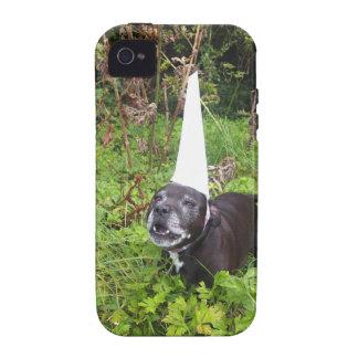 Norfolk Unicorn Hoax Unmasked iPhone 4 Case