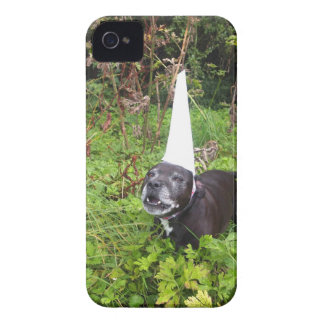 Norfolk Unicorn Hoax Unmasked iPhone 4 Cover