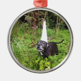Norfolk Unicorn Hoax Unmasked Silver-Colored Round Decoration