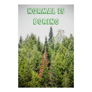 normal is boring print