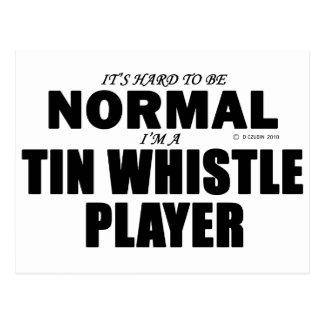 Normal Tin Whistle Player Postcard