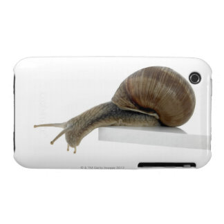 Normalsnail iPhone 3 Case-Mate Cases