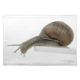 Normalsnail Placemat