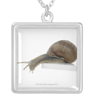 Normalsnail Silver Plated Necklace