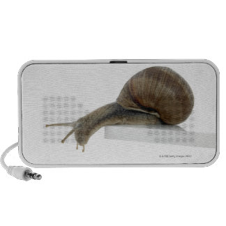 Normalsnail Portable Speakers