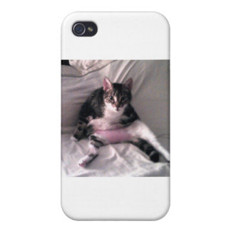 Norman the cat iPhone 4 covers