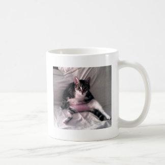 Norman the cat mugs