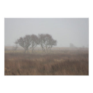 Norsey in the mist photo print
