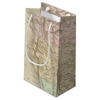 North America 25 Small Gift Bag