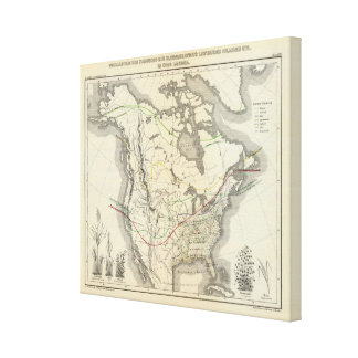 North America 32 Canvas Print