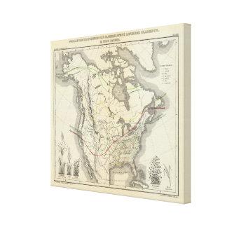 North America 32 Canvas Print
